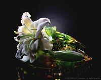 Нажмите на изображение для увеличения Название: Liuli_Lily_Blossom_Wishes.jpg Просмотров: 2 Размер:32.3 Кб ID:161320