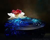 Нажмите на изображение для увеличения Название: Liuli_the_Other_Side_of_Water.jpg Просмотров: 2 Размер:31.6 Кб ID:161331