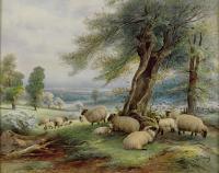 Нажмите на изображение для увеличения Название: c3ebroyal_worcester_davis_025_plaque_sheep.jpg Просмотров: 0 Размер:78.8 Кб ID:2484368