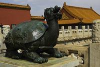 Нажмите на изображение для увеличения Название: BeijingDragon-Turtle.jpg Просмотров: 0 Размер:150.0 Кб ID:152438
