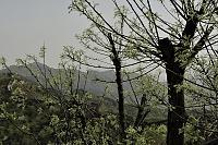 Нажмите на изображение для увеличения Название: ВеликаяКитайскаяСтена-20.jpg Просмотров: 0 Размер:276.1 Кб ID:166029